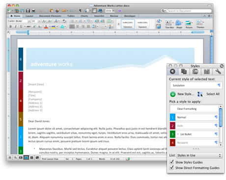 Word document and the visual Style Guides
