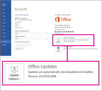 The version number is listed under Office Updates