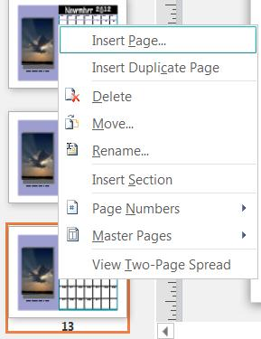 To insert a page, right-click on a page in the Page Navigation pane.