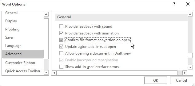 Confirm file format conversion on open option