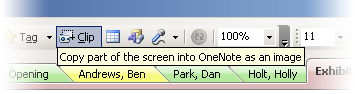OneNote 2007 toolbar showing Screen Clipping Tool
