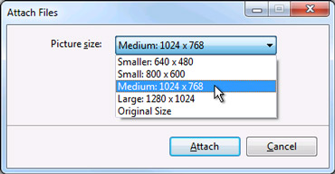Resize picture attachment options