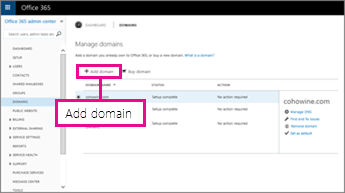 Click Add domain on Office 365 Domains page