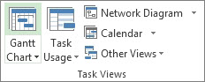 Task Views group on the View tab.