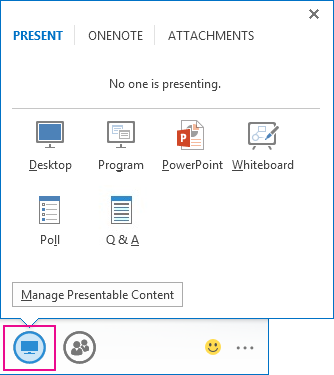 Options on the Present tab
