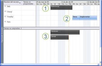 Gráfico de Organizador de equipo