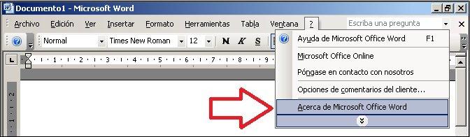 Ayuda de Word2003, Acerca de