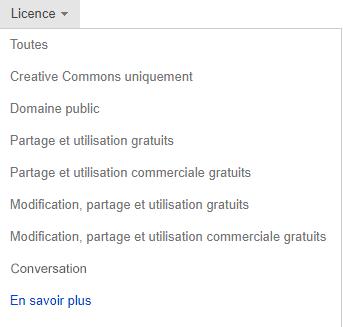 Liste déroulante Licence définie sur Libre de modifier, partager et utiliser des images à des fins commerciales.