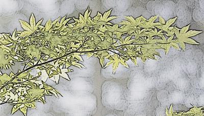 फ़ोटोकॉपी प्रभाव के साथ पत्तियाँ