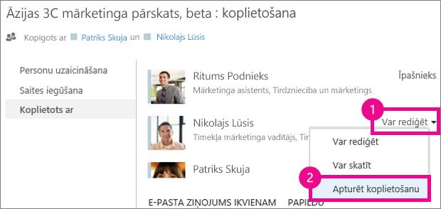 Komanda Pārtraukt koplietošanu pakalpojuma OneDrive darbam logā Koplietošana