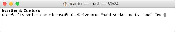 Capture d'écran de la saisie de la commande enableAddAccounts dans les fenêtres Terminal